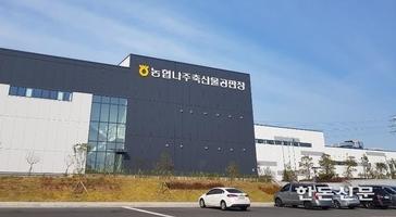 농협 나주축산물공판장 가동…도축부터 경매까지 '원스톱 서비스'