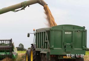 국제 곡물가격 7개월째 상승세…긴급할당관세 등 검토